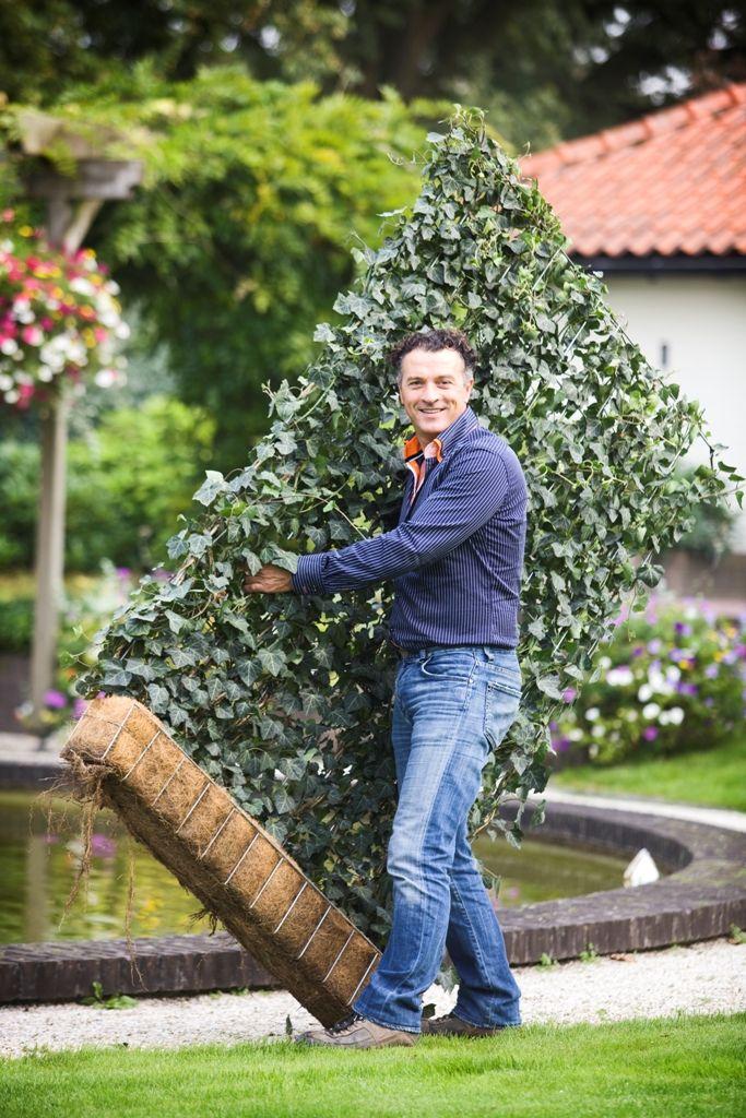 Galvanised Vegetable Gardens