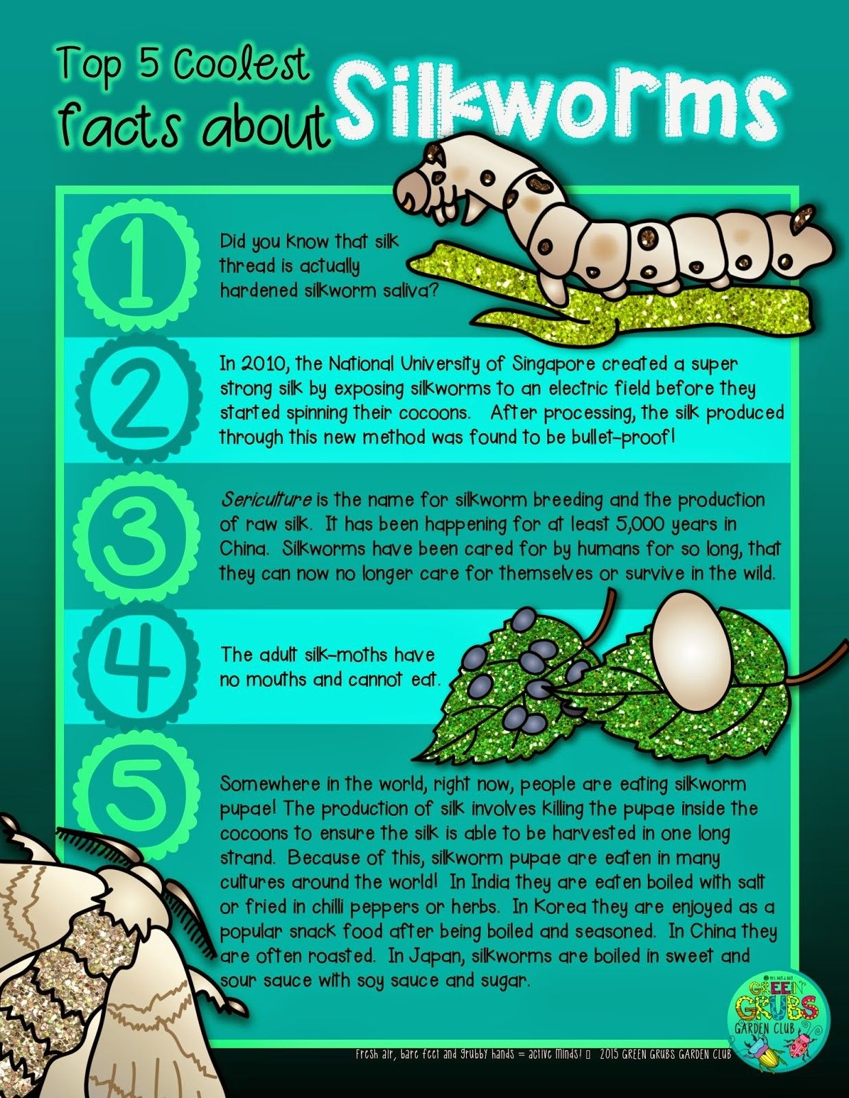 Free Printable Top 5 Coolest Facts About Silkworms