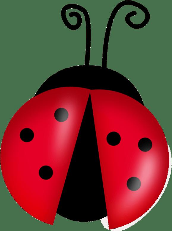 lady bug clip art - google