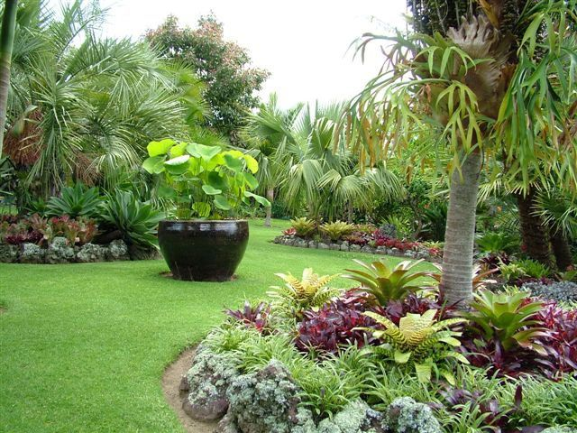 Totara Waters Subtropical Garden Gardens Pinterest Gardens