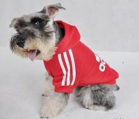 Image detail for -... Dog clothes, dog clothing,New year ...