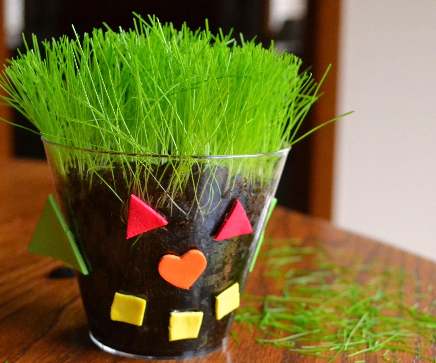 A Cup Of Spring Plant Seeds To Make A Grass Buddy Spring Preschool