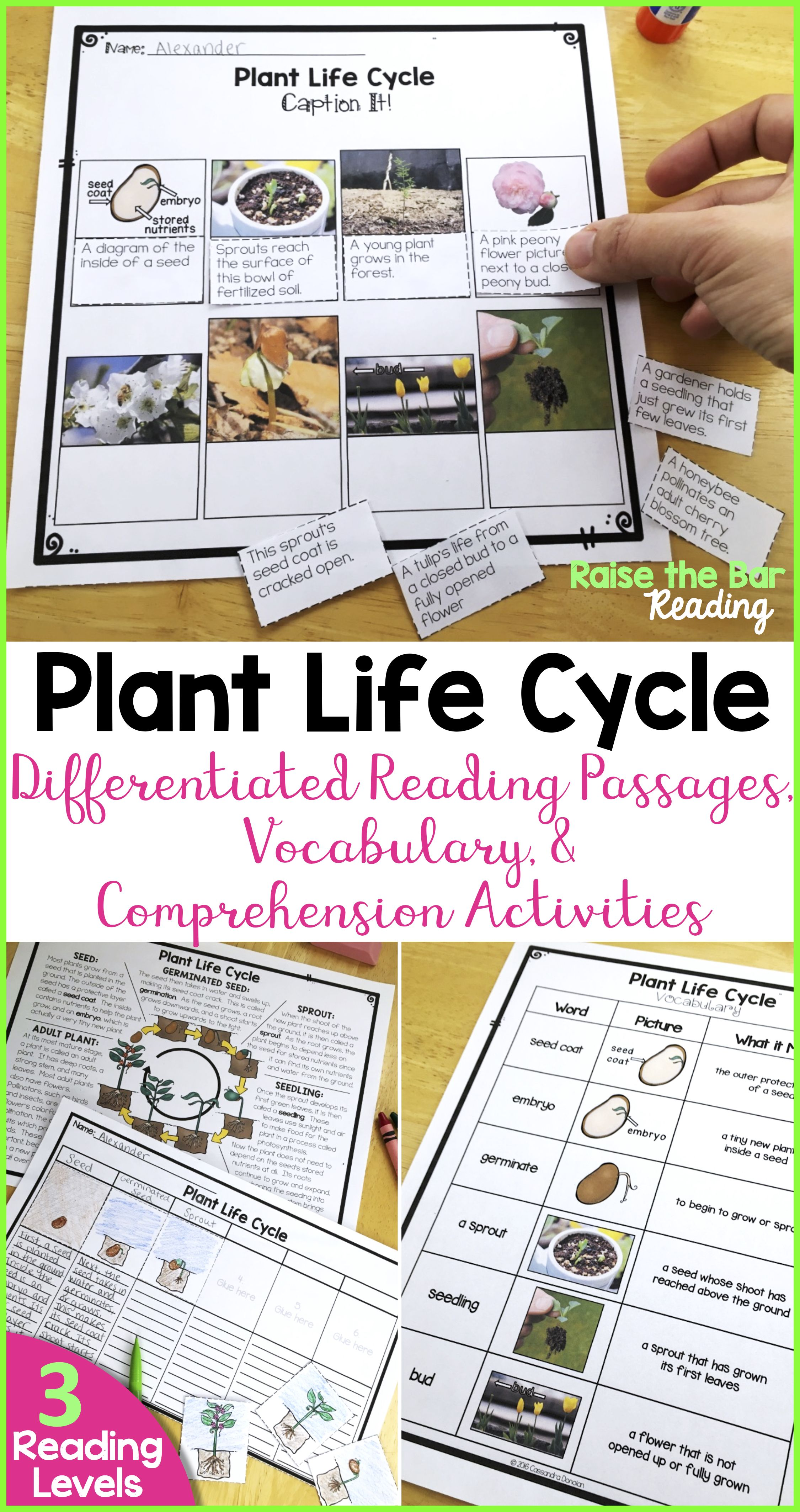 Differentiated Plant Life Cycle Reading Passage