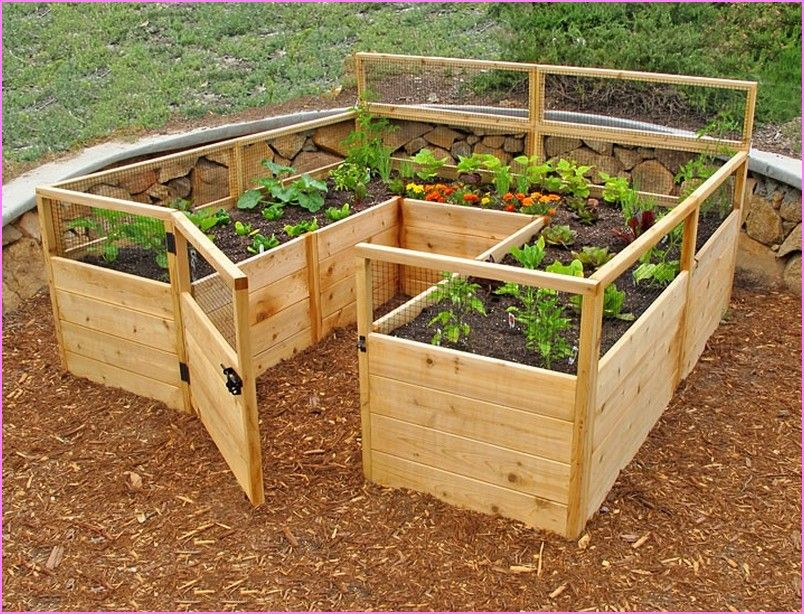 Pictures Of Above Ground Vegetable Gardens Google Search