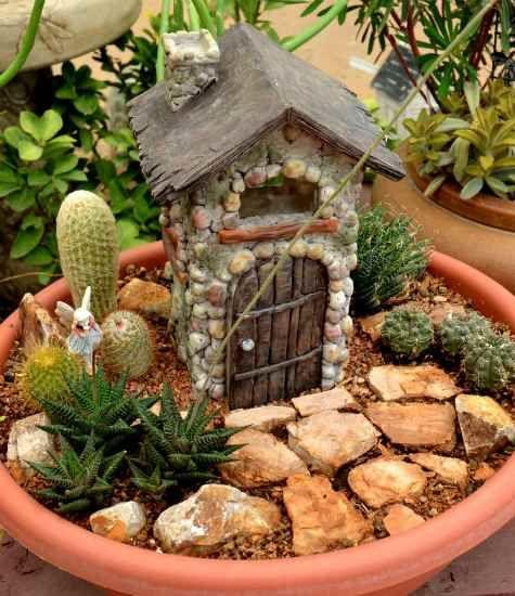 Birds & Blooms Container Ideas Miniature Succulent Fairy Garden