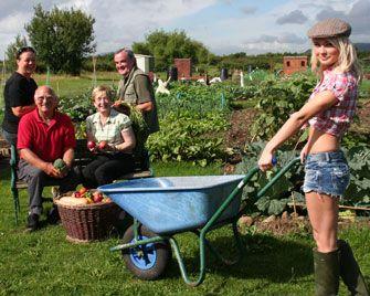 Garden Allotment Designs England English Allotments A Very