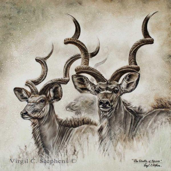 Ghosts Of Africa Kudu African Wildlife Print
