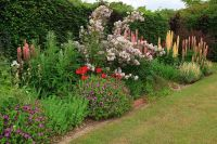 gardening border ideas - Google Search | Garden Ideas ...