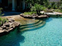 Like the sloped entrance | Natural Swimming Pools ...
