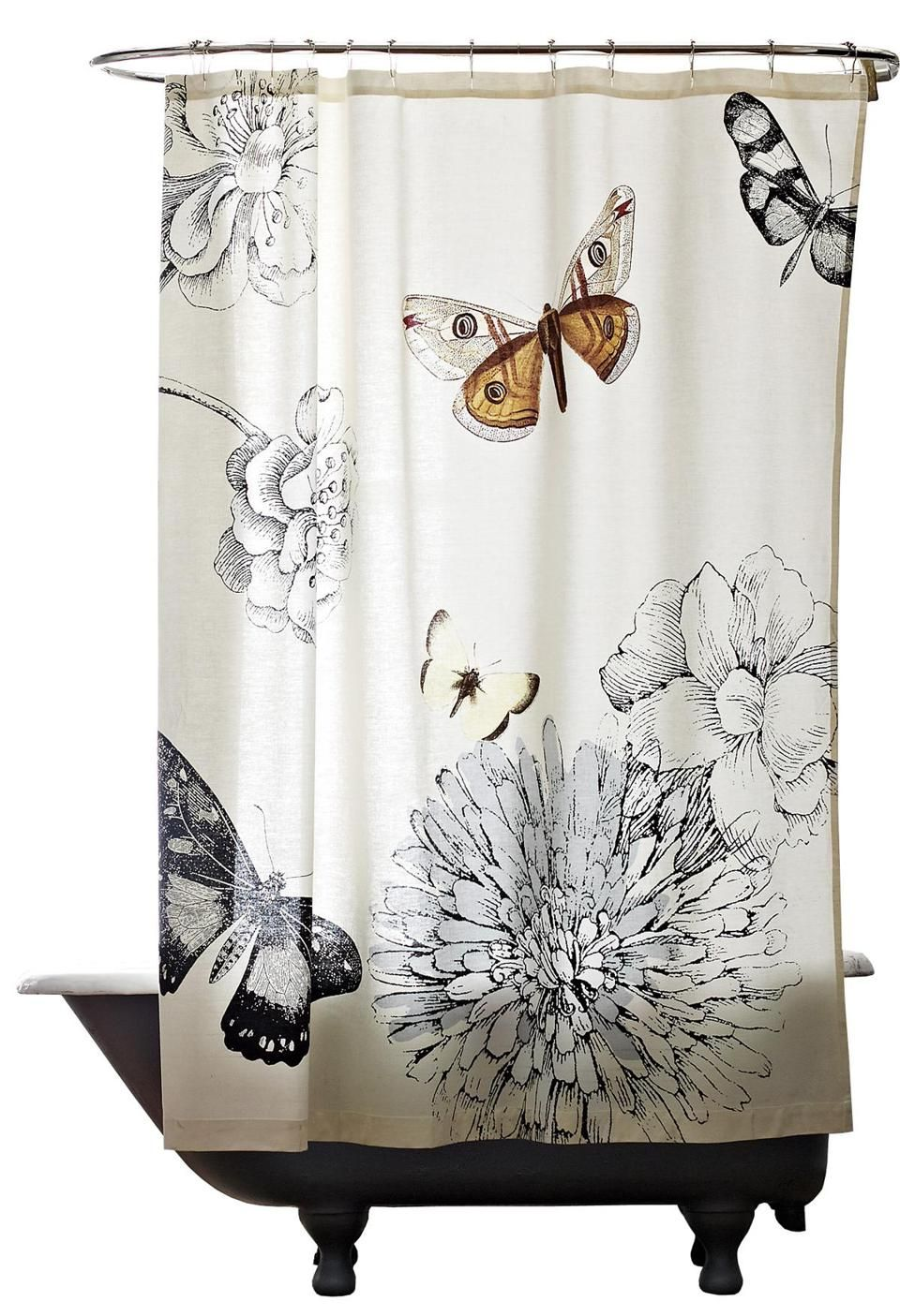 Creatures featured  The Boston Globe  Butterfly shower