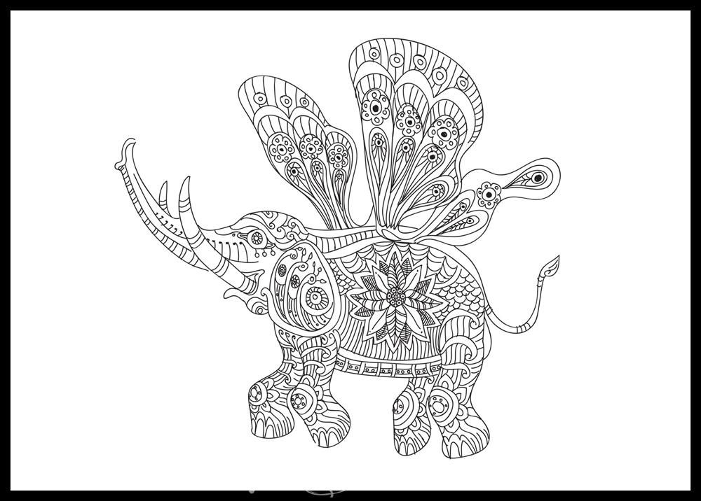animal wildlife Coloring pages colouring adult detailed