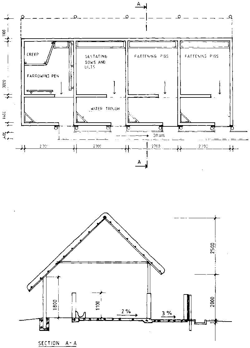 4 h pig diagram 2005 mazda 3 serpentine belt pen wiring diagrams source schematic name