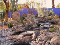 Decorative desert gardens ideas for backyard landscaping ...
