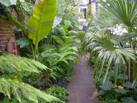 Tropical landscaping Garden Backyard Ideas | Tropical ...