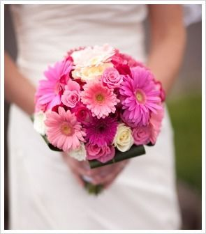 Best 25 Gerbera wedding flower ideas ideas on Pinterest  Gerbera wedding arrangements Gerbera