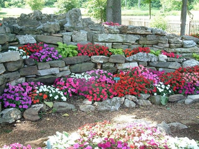 Shade Plants In A Rock Garden Rock Garden Pinterest Gardens