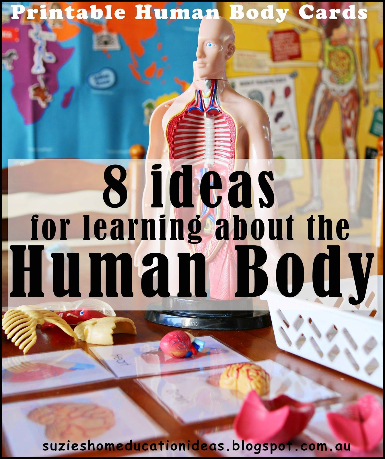 Suzie S Home Education Ideas 8 Ideas For Learning About