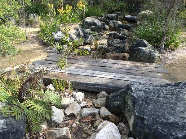 Native Australian Garden Design Ideas Google Search Native