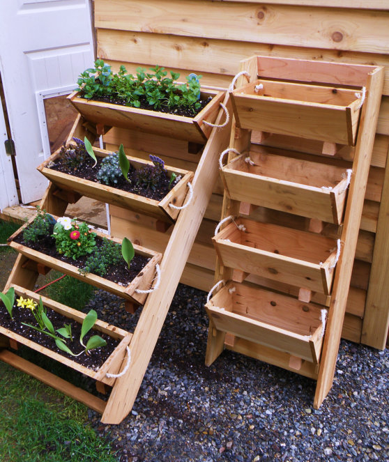 17 Best Images About Gardening On Pinterest Gardens Pallet Herb