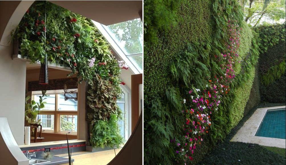 Vertical Gardens Grow Out Of Wall Mounted Capillary Matting Clad