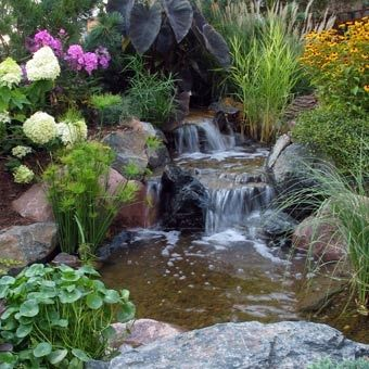 Can I Have This In My GARDEN? Water Garden Design Garden Ponds