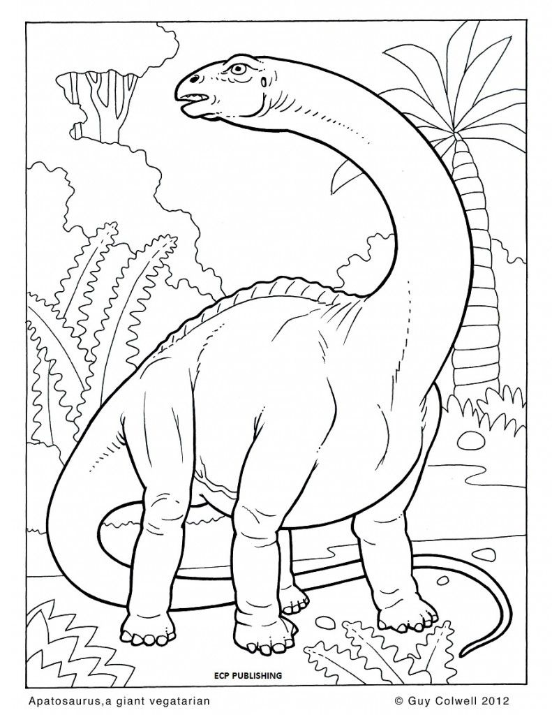 Dinosaur Coloring Page Dinos Pinterest Adult Coloring