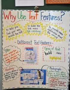 year of many firsts blog why use text features anchor chart idea also frodo fullring rh