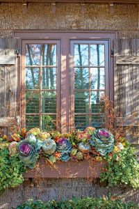Transitional Window Box - Fabulous Fall Decorating Ideas ...