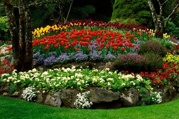 Garden Flowers Ideas The Gardening