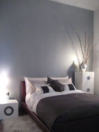 Silver Metallic Wall Paint   www.imgkid.com - The Image ...