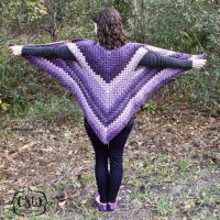 Striped Granny Stitch Caron Cakes Triangle Shawl | Free ...