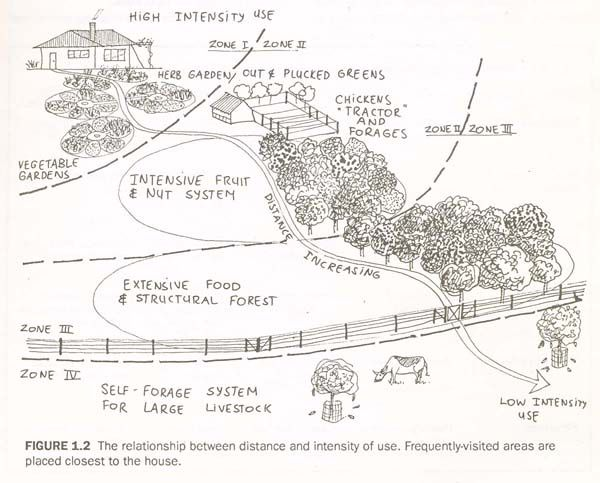 The Permaculture Blueprints . I really like this layout