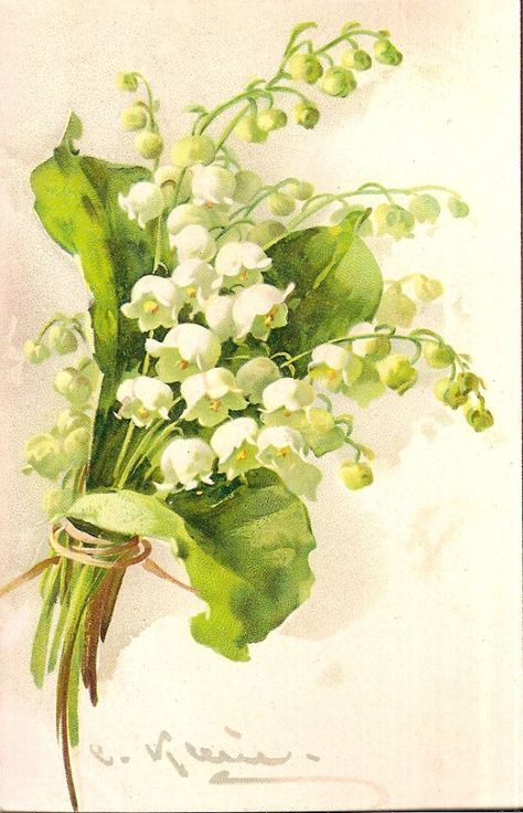 Antique Hydrangea Watercolor