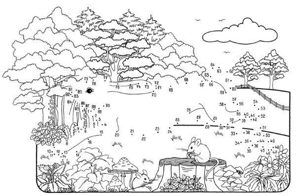 Dibujo de unir puntos de una liebre en el bosque: dibujo