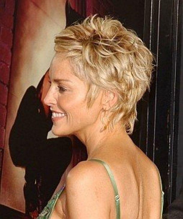 Sharon Stone Back Short Hairstyles Home Short Sharon Stone