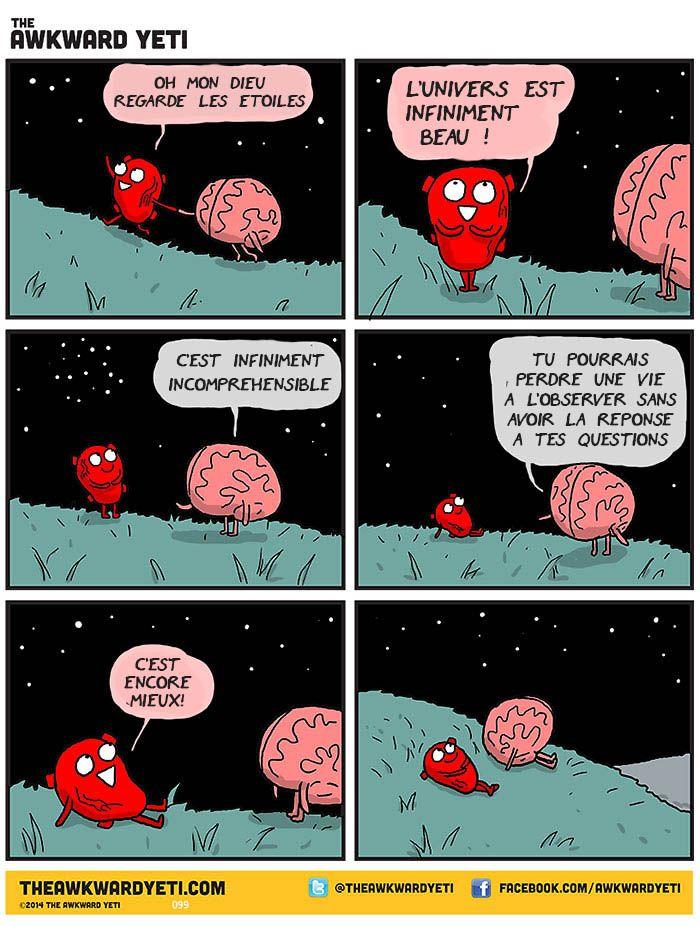 Top 12 des petits désaccords entre votre cœur et votre cerveau en ...