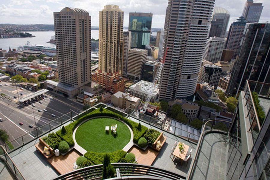 City Roof Garden In Skyline Building How To Build Roof Garden In