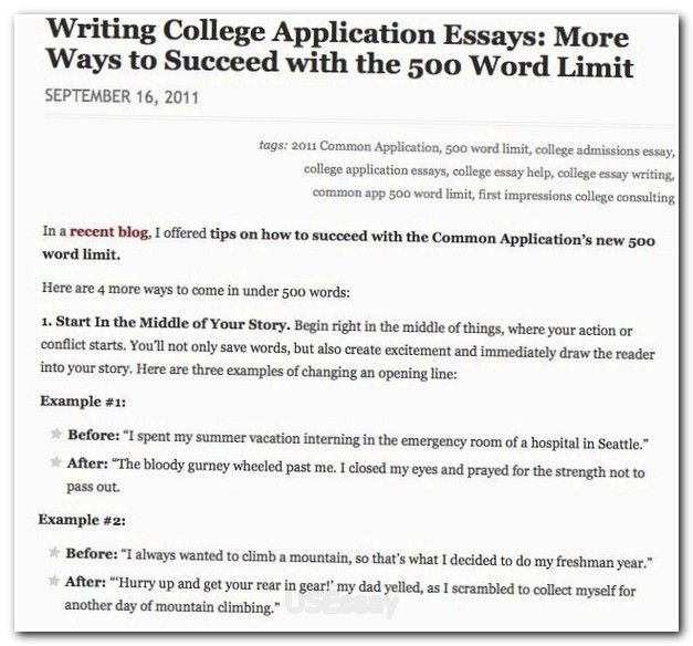 Example 500 Word Essay How To Format Your Paper In Apa Word Essay