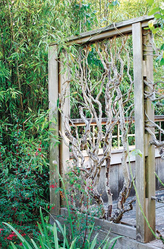 """Go Natural """"Quirky Panels Built From Fallen Twisted Willow"""