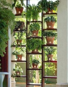 This indoor garden would be perfect for growing food indoors during winter love vertical could  great idea to create privacy wall also plants as roomider home decor pinterest gardens rh
