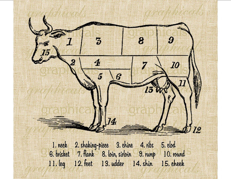 vintage lamb butcher diagram gez im monat beef cuts chart instant clip art digital download
