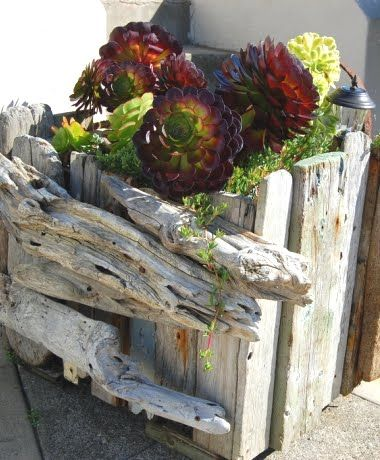 Recycled Drift Wood Garden Planter I Am Now On The Search For