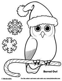 malvorlage weihnachten erwachsene - kinder zeichnen und ausmalen