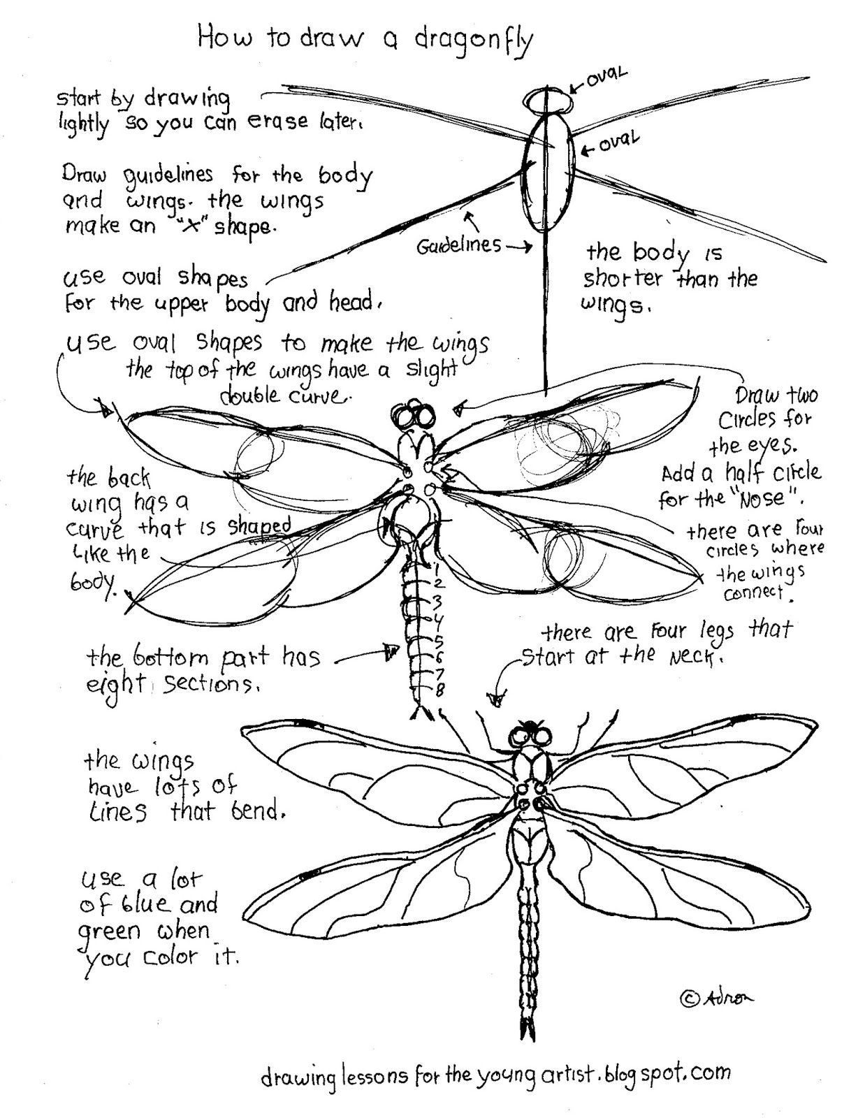 How to Draw Worksheets for The Young Artist: Printable How