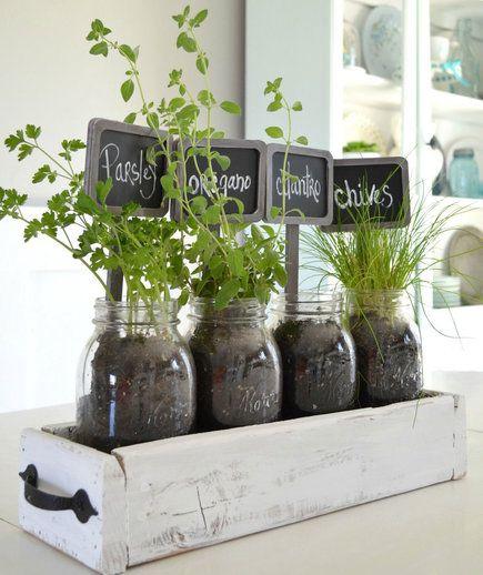 10 Indoor Garden Ideas To Cure The Winter Blues Gardens