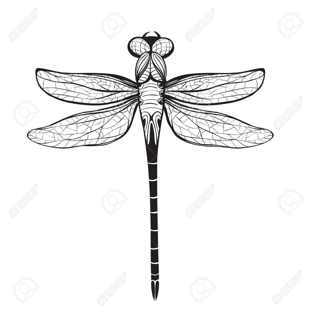 Dragonfly Insect Black Inky Drawing Flying Adder One Color