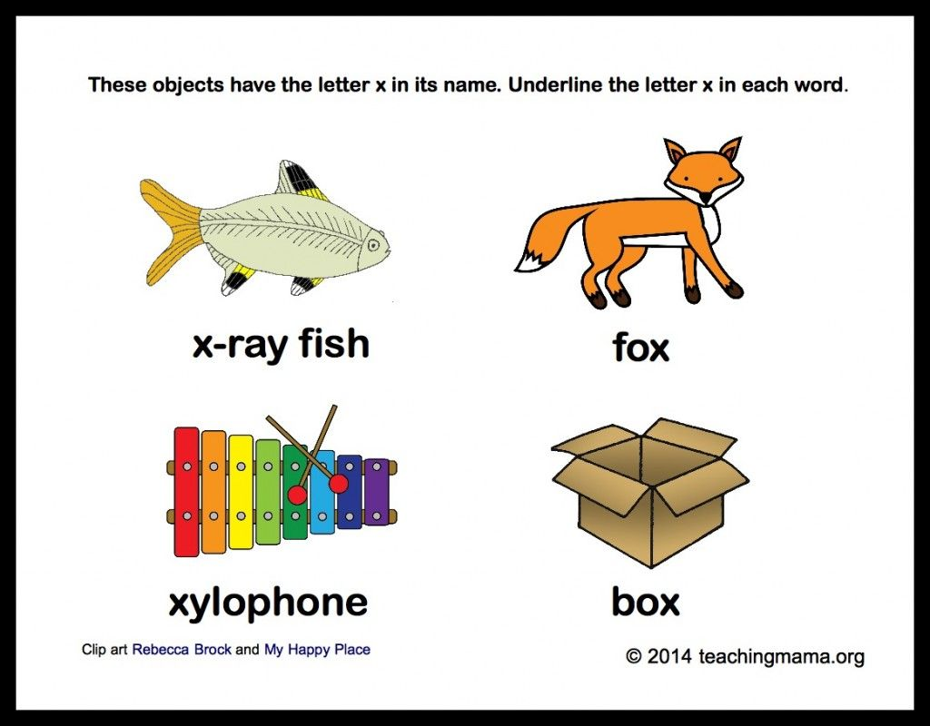 What Animal Starts With The Letter X