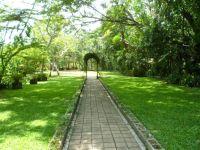Helai Namonamo: Port Moresby's Botanical Gardens Nature ...