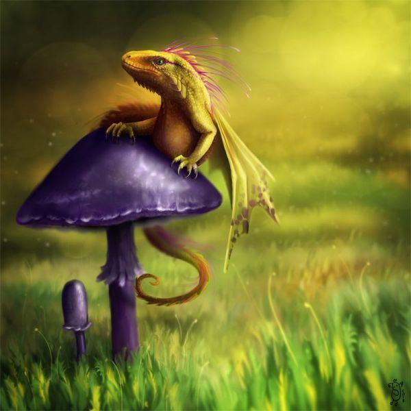 "Fairy Dragon Nimportant Deviantart. Kind Of Cool. Hear ""fairy """