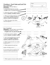Worksheets On Food Chains And Food Webs | Science ...